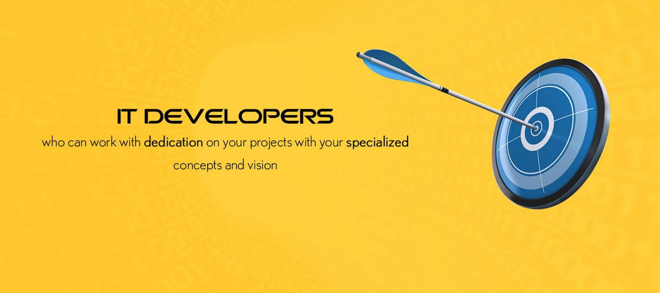 IT Developers